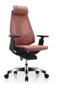 GN-BP-HAM黑框黑色扶手&抛光椅脚