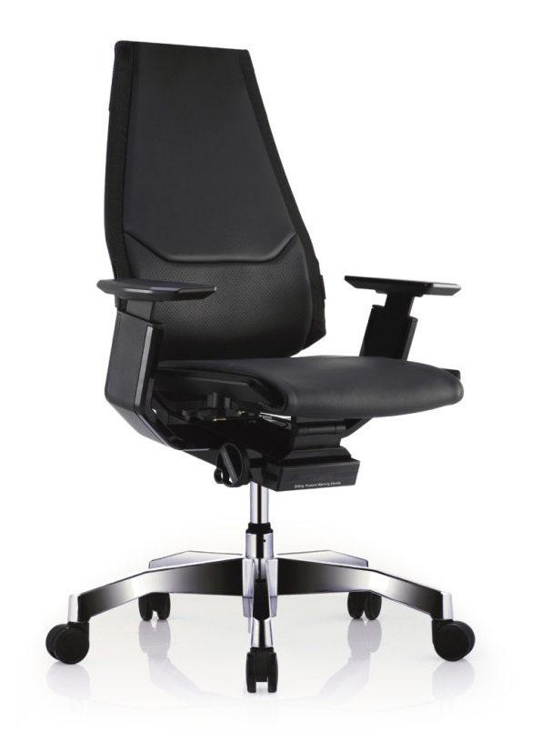 GN-BP-LAL黑框黑色扶手&抛光椅脚